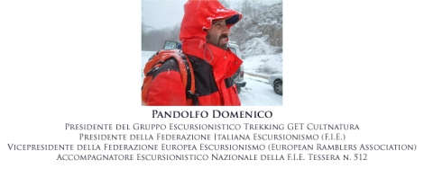 Pandolfo Domenico