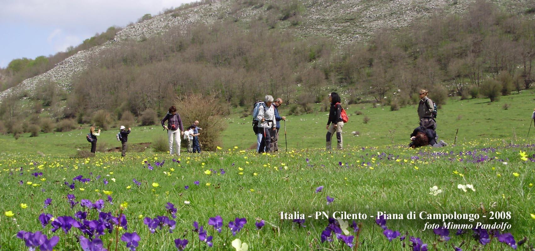 Italia, PN Cilento - Piana di Campolongo - 2008