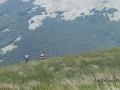 PN Pollino - 2017 - un mare d'erba