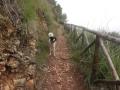 Sentiero della Primula_0032