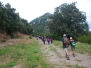 V Med Walking Festival