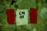 IMGP8662